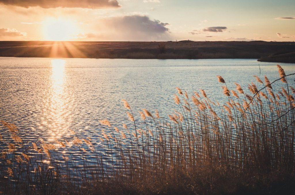 10 Gründe für ein Promotionscoaching oder: Was Coaching mit einem Spaziergang um den See zu tun hat